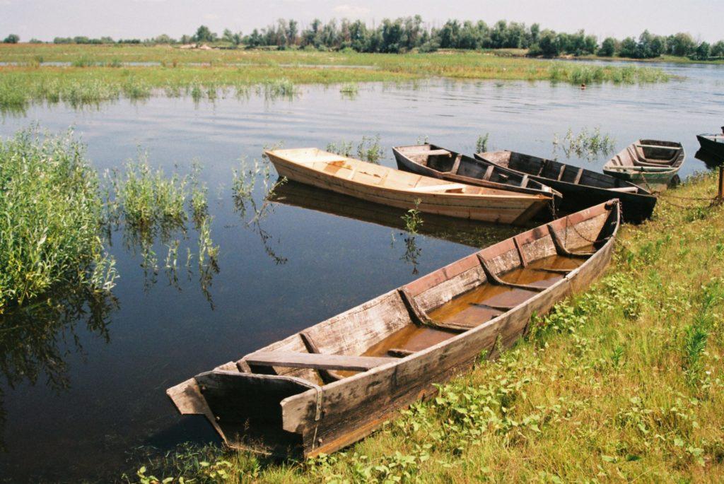 Post_Belarus_Turovsky meadow Reserve